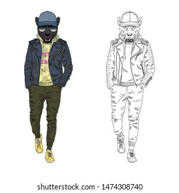 Panther man dressed up in leather jacket hoodie and cap. Anthropomorphic urban fashion wild cat animal illustration. City Hipster Black Leopard.