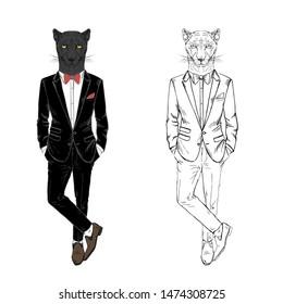 Panther man dressed up in tuxedo. Anthropomorphic fashion wild cat animal illustration. Hipster Black Leopard.