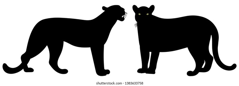 Panther. Predator's standing straight up. Vector illustration. Black silhouettes isolated on white backround.