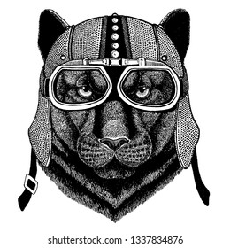 Panther, Puma, Cougar, Wild cat wearing motorcycle, aero helmet. Biker illustration for t-shirt, posters, prints.