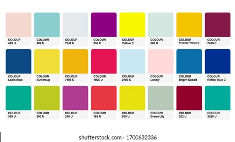 Pantone Mix Catalog Colour Guide Book Cards Samples Inspiration Illustration Template in RGB Vector for Everyday Use
