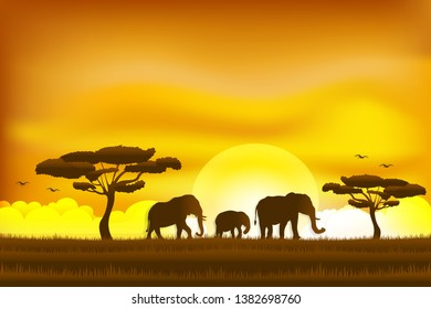 Paper art and digital craft style of world elephant Day , elephant in the grass sunrise , Vector illustration.