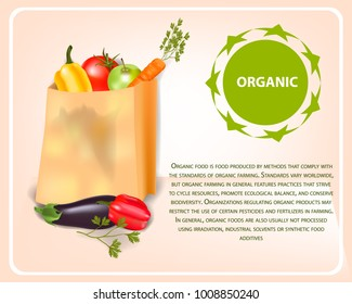 Paper bag full of fresh vegetables. Package with healthy food. Vector colorful illustration.  Shopping at the supermarket or grocery store. Organic products from the farm.
