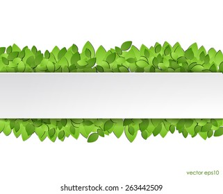 Paper green leaves with white  sticker. vector eps10.