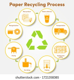 Paper and paper products recycle process infographic.