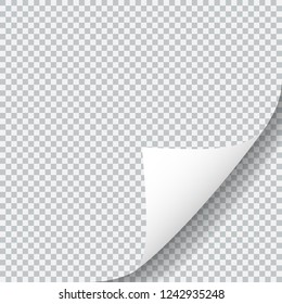 Paper sheet with curled corner. Realistic shadow isolated on transparent background. Vector design illustration