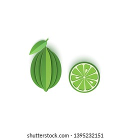 The paper is sliced with whole and slice lime citrus, an excellent design for any purpose. Summer, sweet green lemon juicy food. Vector card 3d illustration. Tropical papercraft layers fruit