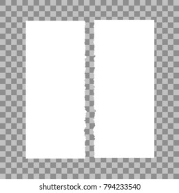 Paper torn in half on a transparent background. Vector illustration.