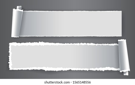 Papers strips with torn edges. Pieces of ripped white paper and soft shadow for web and print