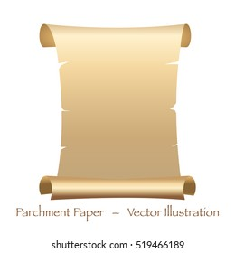 Parchment Paper Vector Illustration