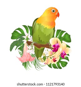 Parrot Agapornis lovebird tropical bird  standing on a branch and Brugmansia with yellow orchid on a white background vector illustration editable hand draw
