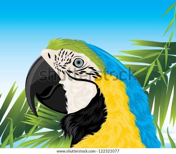 parrot-among-palm-branches-vector-600w-1