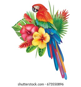 Parrot Ara with tropical plants and flowers