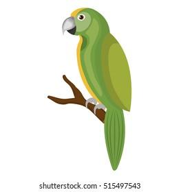 parrot bird isolated icon