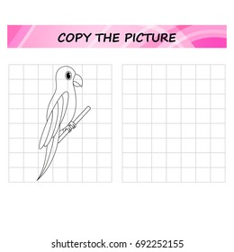 parrot  - copy the picture, worksheet.  Education game for children.