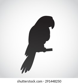Parrot icon isolated on white background. Vector art.