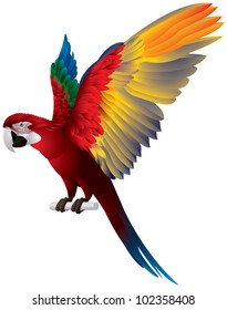 Parrot Spread Wings, Red-and-green Macaw, large mostly-red Green-winged bird, the largest of the Ara genus, vector image