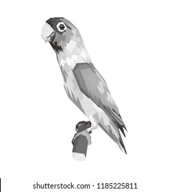 Parrot tropical bird lovebird Agapornis standing on a branch with white background.  lovebird gray vector illustration