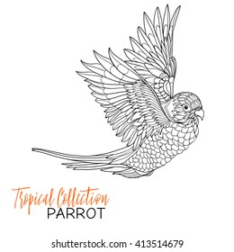 Parrot. Tropical bird. Vector illustration. Coloring book for adult and older children. Coloring page. Outline drawing.