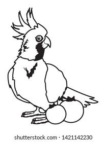 parrot wild cockatoo with bluberries icon cartoon in black and white vector illustration graphic design