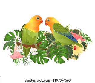 Parrots Agapornis lovebird tropical birds  standing on a branch and Brugmansia with pink and yellow hibiscus  on a white background vector illustration editable hand draw