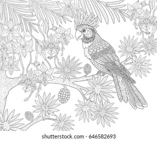 Parrots cockatoo and tropical exotic flowers in the jungle page for adult coloring book in doodle style.