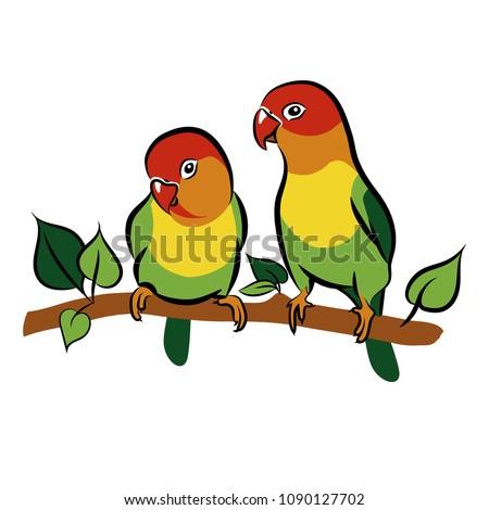Parrots Lovebirds Isolated Birds On White Background Tropical Bird Vector Illustration