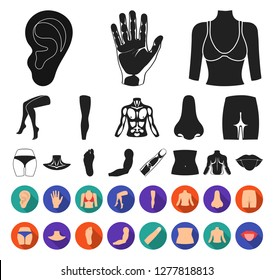 Part of the body, limb black,flat icons in set collection for design. Human anatomy vector symbol stock web illustration.
