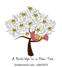 partridge  in a pear tree - 12 days of Christmas