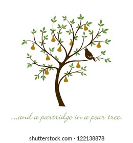 """...and a partridge in a pear tree"" Christmas card in vector format."