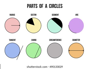 Parts of a circles on white background (Helpful for basic Education & Schools), vector illustration