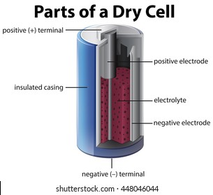 Dry cell images stock photos vectors shutterstock parts of a dry cell battery ccuart Gallery