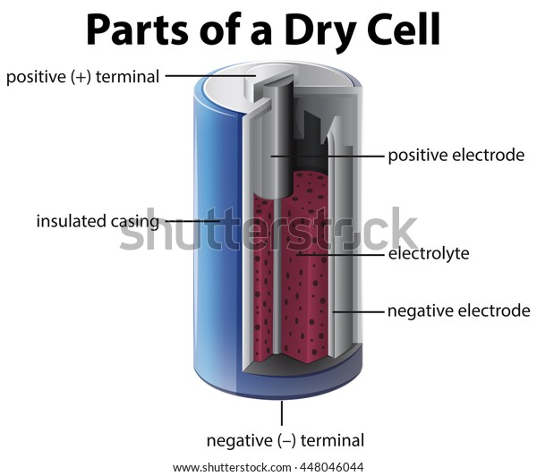 Parts Dry Cell Battery Stock Vector  Royalty Free  448046044
