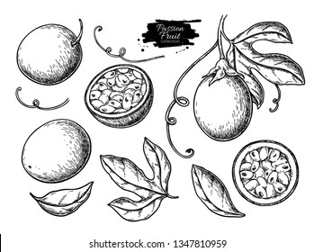 Passion fruit vector drawing set. Hand drawn tropical food illustration. Engraved summer passionfruit objects. Whole and sliced maracuya. Botanical vintage sketch for label, juice packaging design