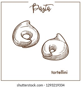 Pasta Tortellini chalk sketch icon for Italian cuisine menu. Vector isolated tortellini pasta type on white background for Italy pasta packaging or restaurant premium design template