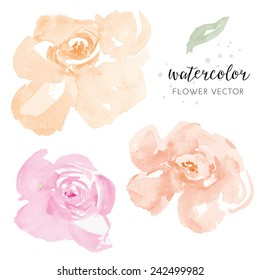 Pastel Pink and Orange Vector Watercolour Flowers. Watercolor Florals