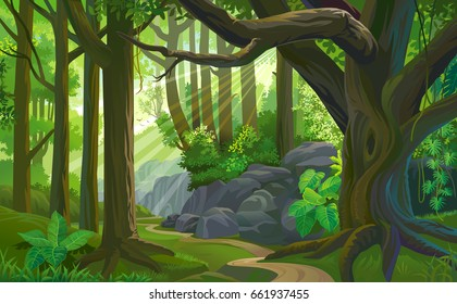 The path across a dense jungle with trees, grass, boulders, dirt, bushes and plants