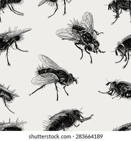 pattern of the big flies