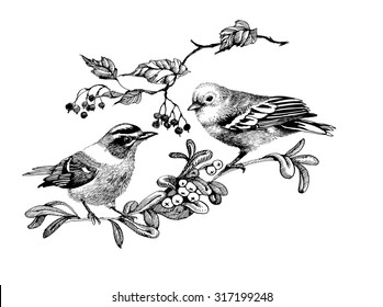 Pattern with birds on twigs, black and white illustration, vector