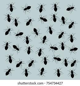 A pattern of black ants