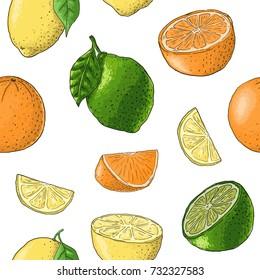 Pattern. Citrus. Set of fruit. Fresh food. Lemons, oranges, mandarin, pomelo, lime. Vector illustration