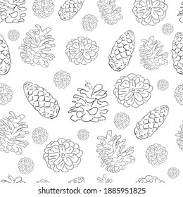 Pattern, cones isolated on white background. Vector image. Spruce and pine cones, side and top view.