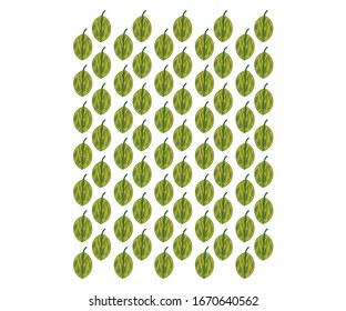 Pattern design for print commercial use