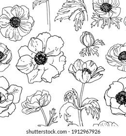 Pattern Flowers vector line drawing. Anemone drawn by a black line on a white background.