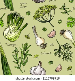 Pattern Herbs. Spices. Herb drawn black lines on a white background. Vector illustration. Fennel, dill, coriander, tarragon, green onion, garlic