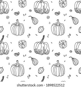 Pattern with linear pumpkins and pumpkin seeds on a white background