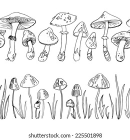 Pattern mushrooms, forest herbs, poisonous mushrooms. Vector elements, pattern isolated on white. Drawing a black line