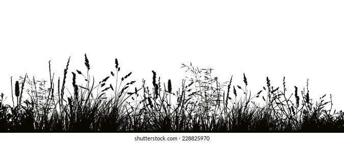 Pattern strip of grass. Vector