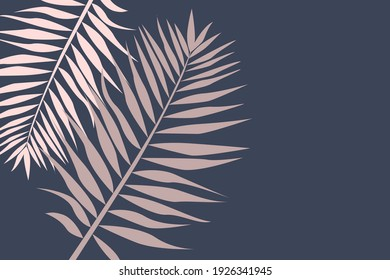 Pattern from tropical leaves. Large palm leaves on blue background with empty space for text