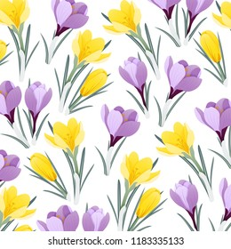 A pattern with yellow and purple crocus flowers (saffron)